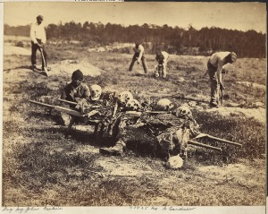 Disinterring the dead at Cold Harbor, April 1865, National Archives