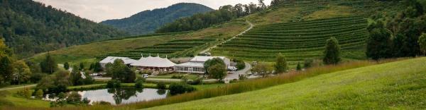 Panorama Short of Winery