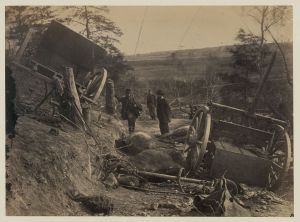 Dead Horses at Fredericksburg, May 1863, Mathew Brady, National Archives