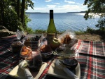 dining-out-picnic-hz